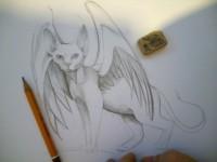 Рисование карандашом. Кошки породы Девон Рекс 3