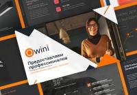 Qwini Коммерческое предложение (консалтинг)