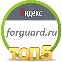 2 место в Яндекс для сайта форгуар