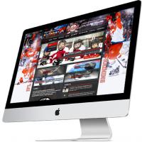 Школа хоккейного мастерства
