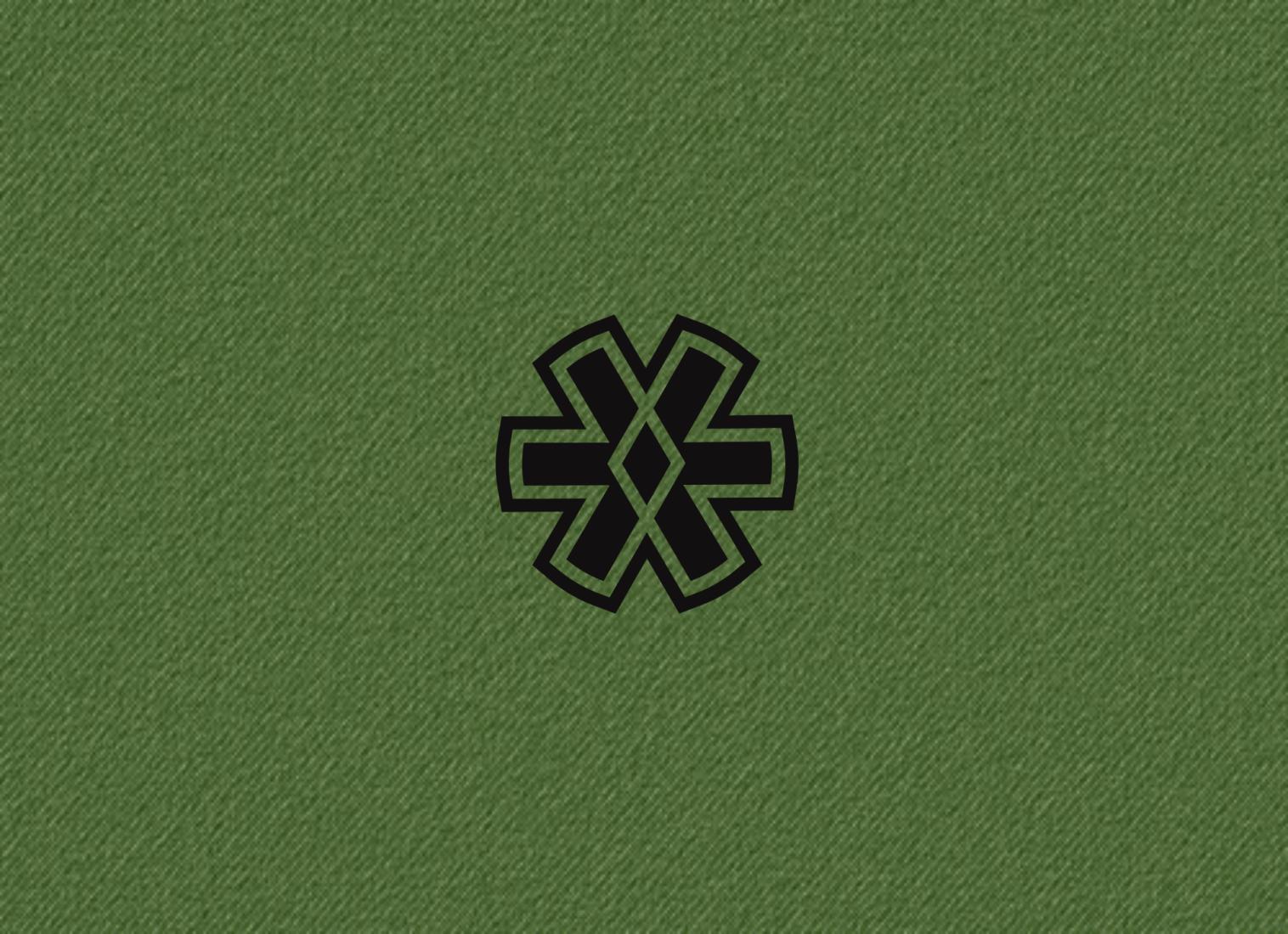"Логотип + Фирменный стиль для компании ""BLACK ICE"" фото f_825571497ced7999.png"