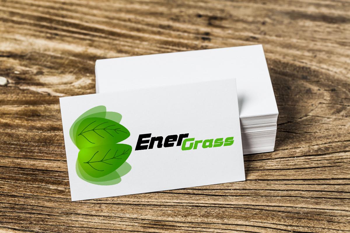 Графический дизайнер для создания логотипа Energrass. фото f_1805f8db07865cfd.jpg