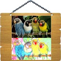 Фото в рисунок - Попугаи