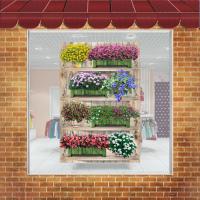 Самоклейка на витрину 1х1,5 м. Полки с цветами