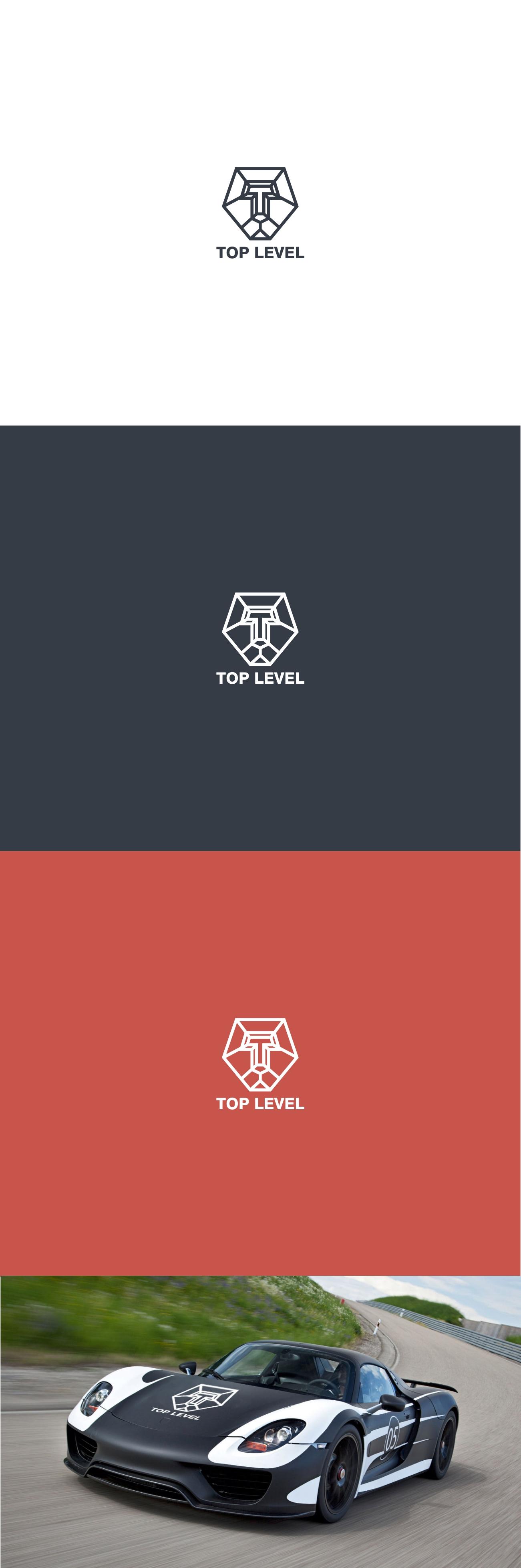 Разработка логотипа для тюнинг ателье фото f_7685f368b2ec31af.jpg