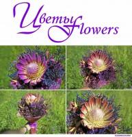 Рекламная фотосъемка цветов