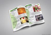 Журнал «Зелёная кухня» 2 (вёрстка)