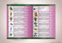 Каталог «Всё для сада» (вёрстка)