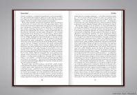 Книга «Голодарь» (вёрстка)