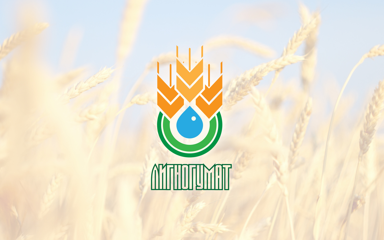 Логотип и фирменный стиль фото f_69559513925f277c.jpg