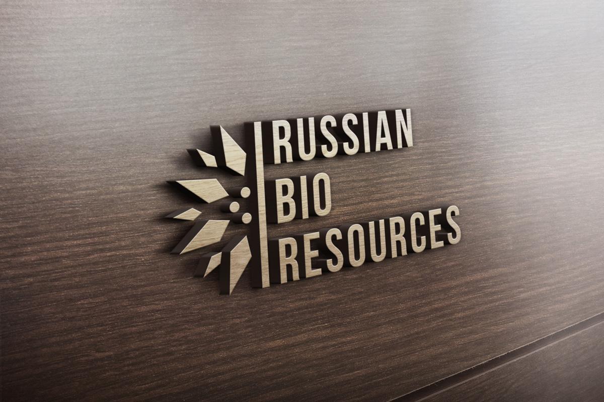 Разработка логотипа для компании «Русские Био Ресурсы» фото f_80558fcd1992cec3.jpg