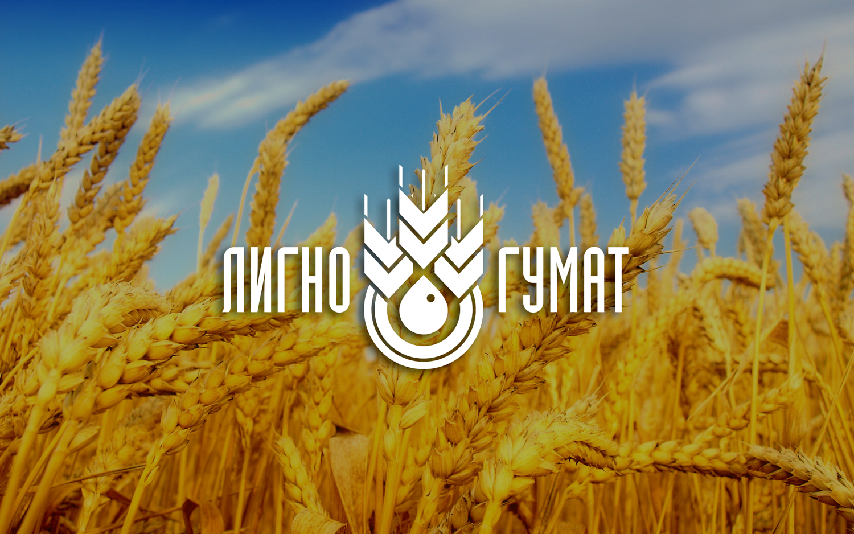 Логотип и фирменный стиль фото f_9755951390ecddc5.jpg