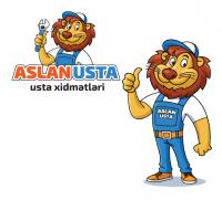 Aslan Usta