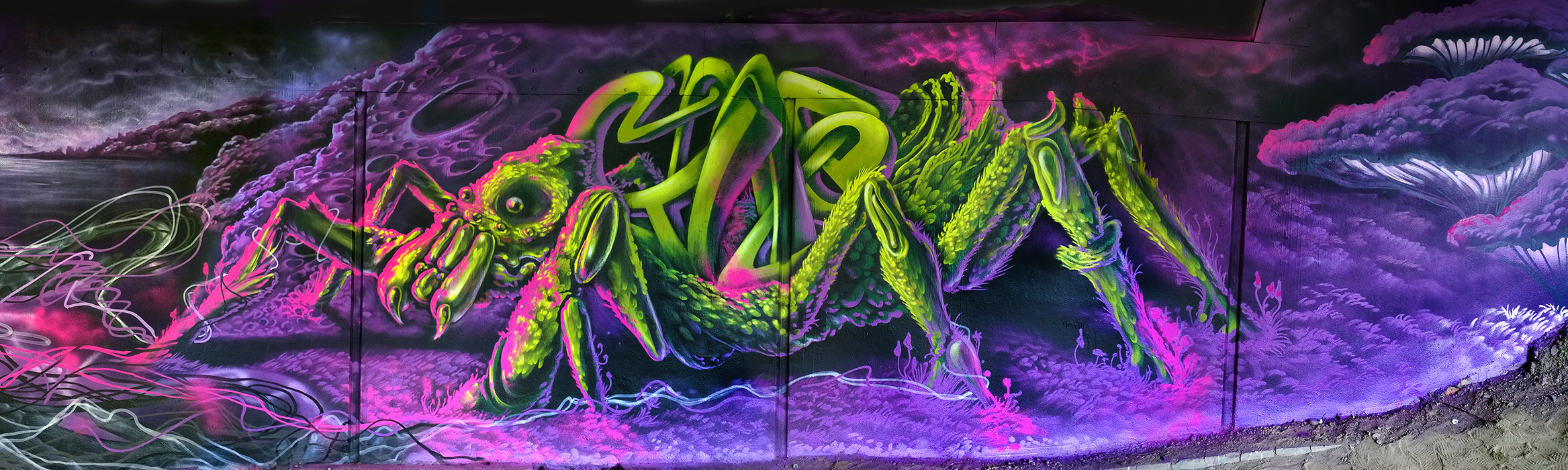 Граффити в г.Карлсруэ ( Германия) .