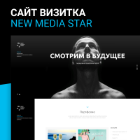 newmediastar.ru