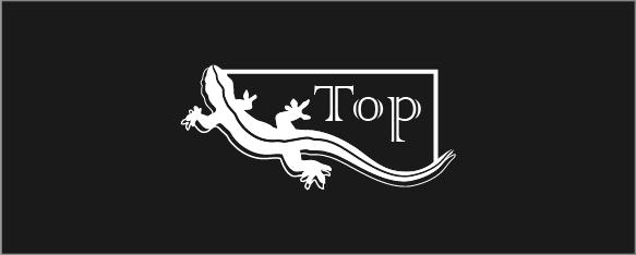 Разработка дизайна коробки, фирменного стиля, логотипа. фото f_9325c65abe6bf0cf.png