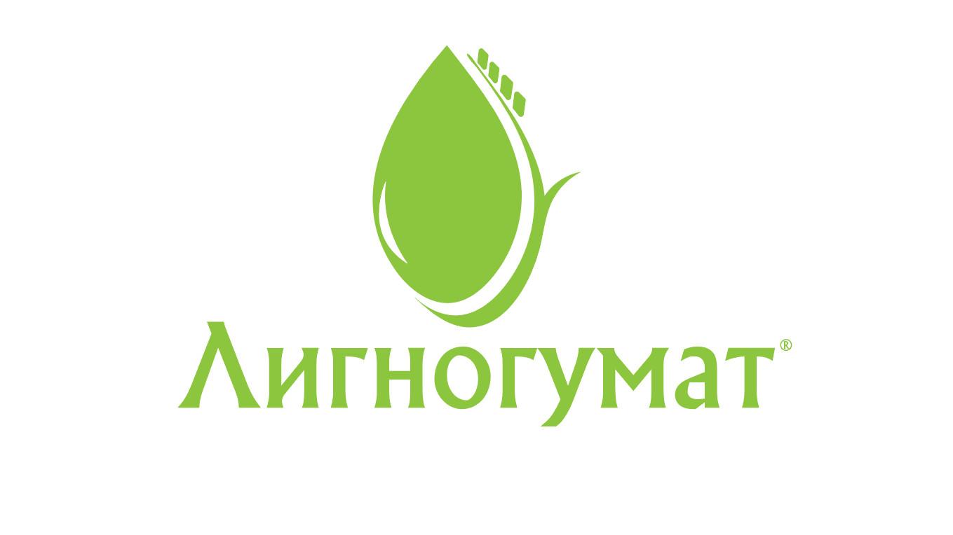 Логотип и фирменный стиль фото f_472595249a25d011.jpg