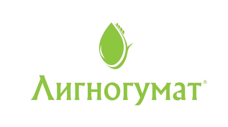 Логотип и фирменный стиль фото f_82959524a255cd10.jpg