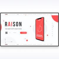 Raison (LP)