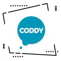 """Сеть компьютерных школ """"Coddy"""""""