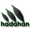 hadahan666