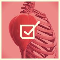 Академия Wellness - Онлайн-тесты