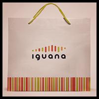 iguana - айдентика яркого магазина эектроники