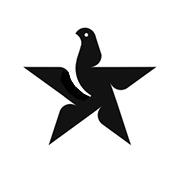 bird in star