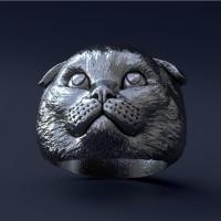 Кот кольцо