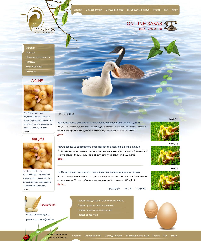 Редизайн сайта. фото f_4e8aa44053eee.jpg