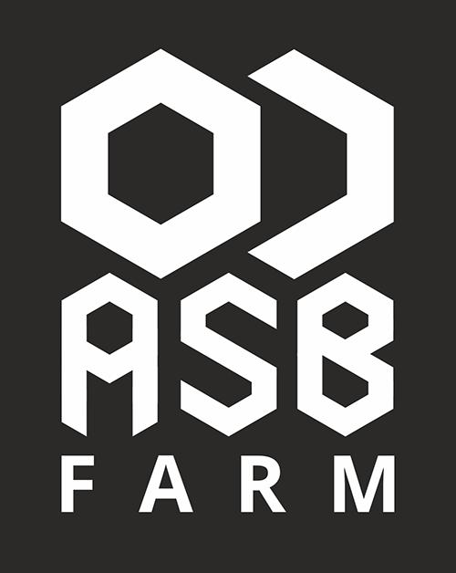 Разработка 3-4 видов логотипа фото f_0735a5cc50d4ecdd.png
