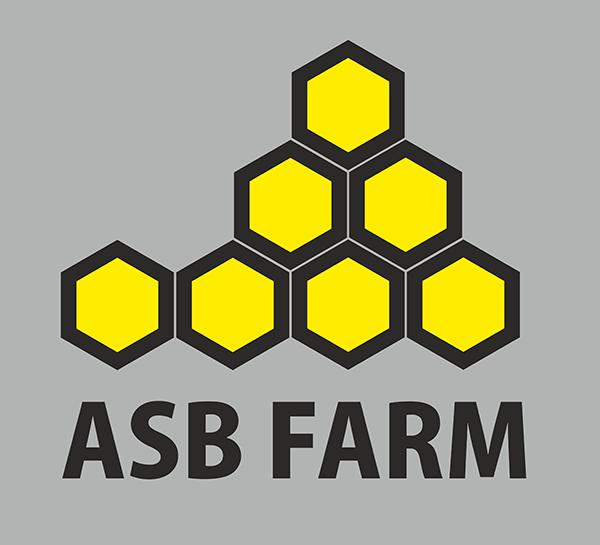 Разработка 3-4 видов логотипа фото f_1535a5cc51517e16.png