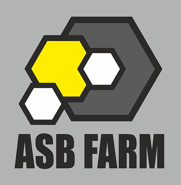 Разработка 3-4 видов логотипа фото f_7795a5cc51cba15f.png