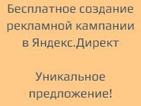 Бесплатная кампания в яндекс. Директ