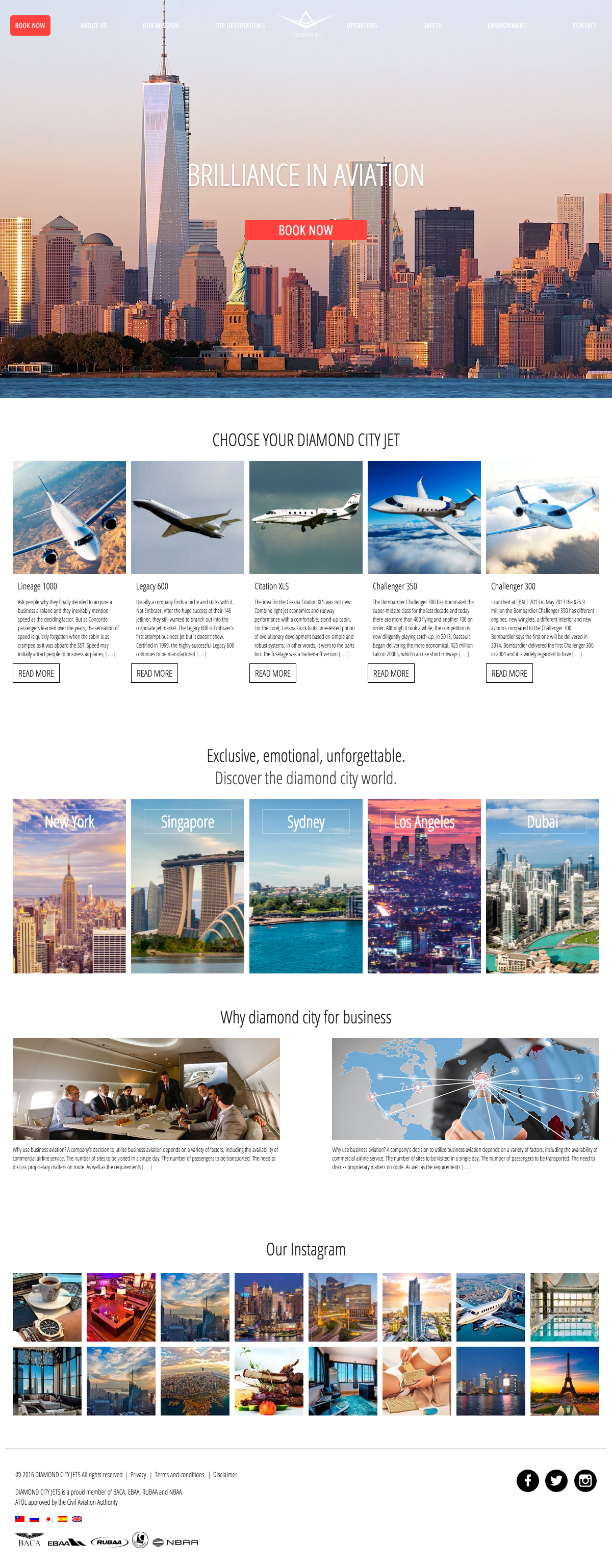 Diamond Coty Jets - PSD to WordPress