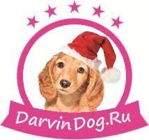 Создать логотип для интернет магазина одежды для собак фото f_601564a4cf64d629.jpg