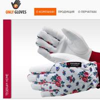 Магазин на MODx EVO (перчатки)