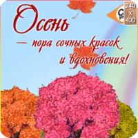 Clipyou.ru (проект МУЗ-ТВ) Музыкальная битва ОКТЯБРЬ