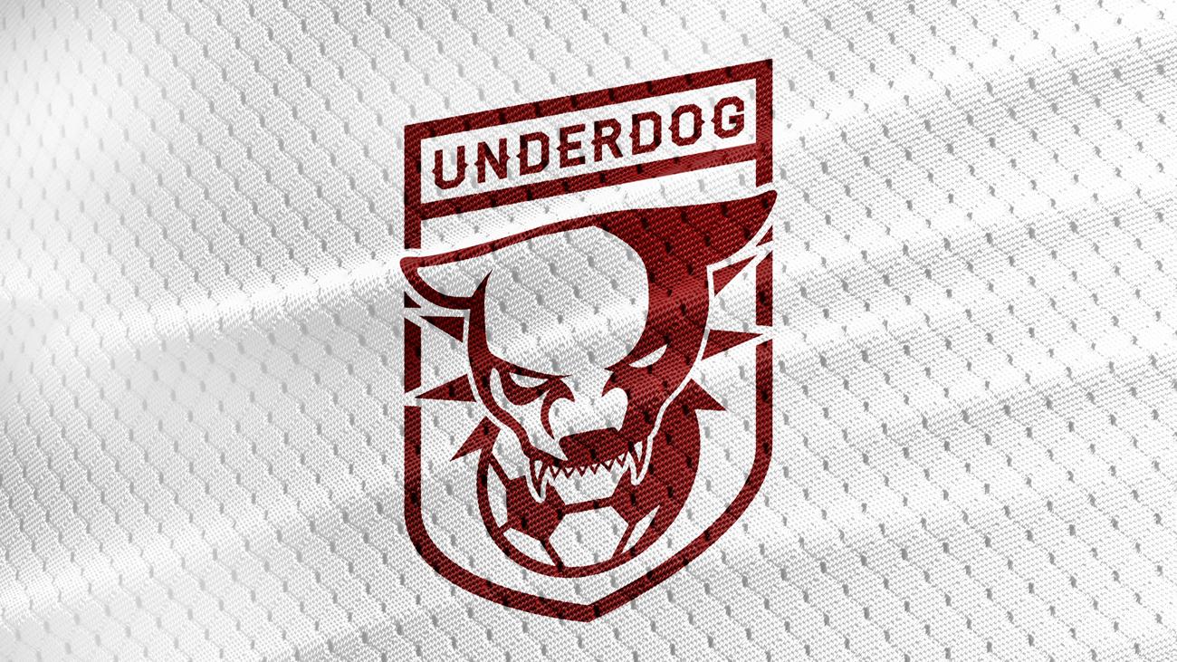 Футбольный клуб UNDERDOG - разработать фирстиль и бренд-бук фото f_5905caf51258746e.jpg
