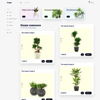 Интернет-магазин тропических растений