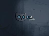 Owl Courses