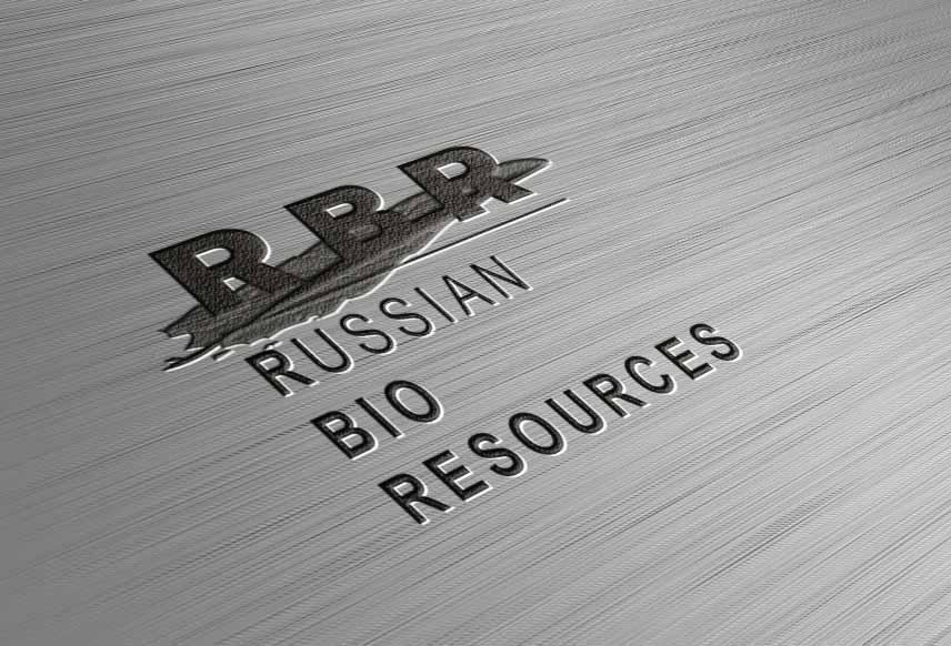 Разработка логотипа для компании «Русские Био Ресурсы» фото f_66158fb8c15d7da5.jpg