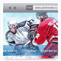 Магазин: хоккейное снаряжение