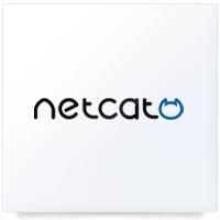 Работаем с NetCat: Интернет-магазин
