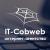 it-cobweb