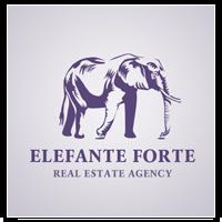 Агентство недвижимости Elefante forte