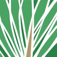 Логотип «Кедр» Ателье обоев ручной работы