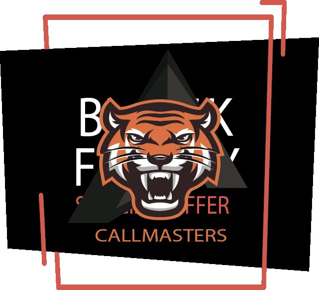 Логотип call-центра Callmasters  фото f_1305b6ccd43af933.png