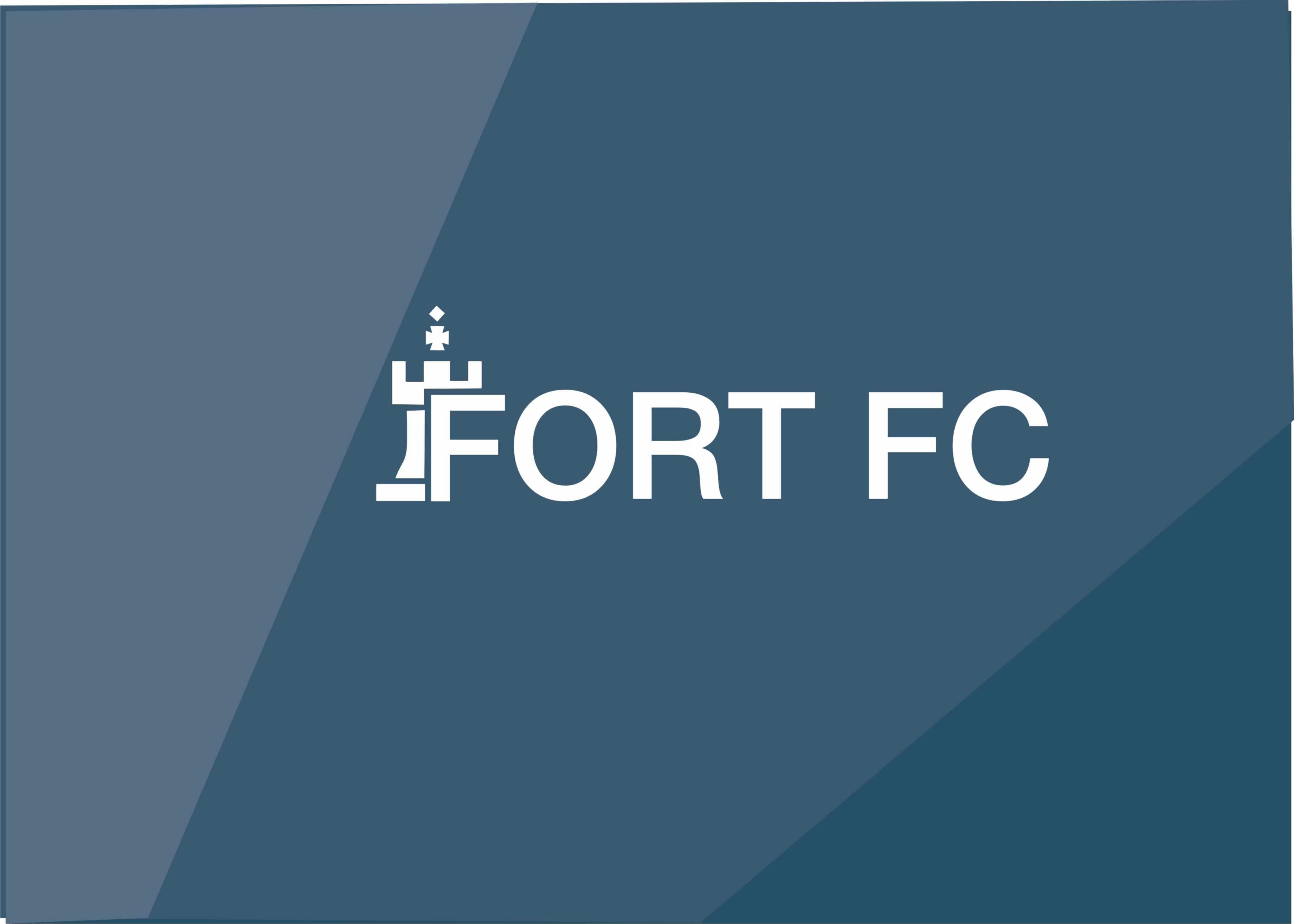 Разработка логотипа финансовой компании фото f_4415a8963d709253.jpg