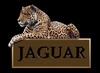 jaguarcatRabota